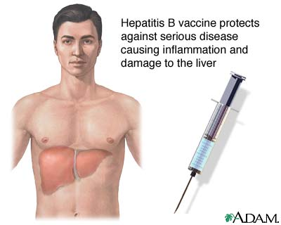 Difference Between Hepatitis B and C: