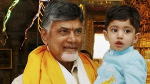 AP CM Chandrababu Naidu's grandson nearly six times richer than him